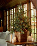 """Park Hill Collections Blue Spruce 54"""" Artificial Christmas Tree"""