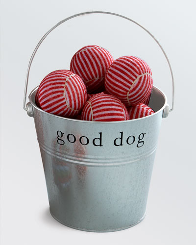 """Good Dog"" Tennis Ball Tin"