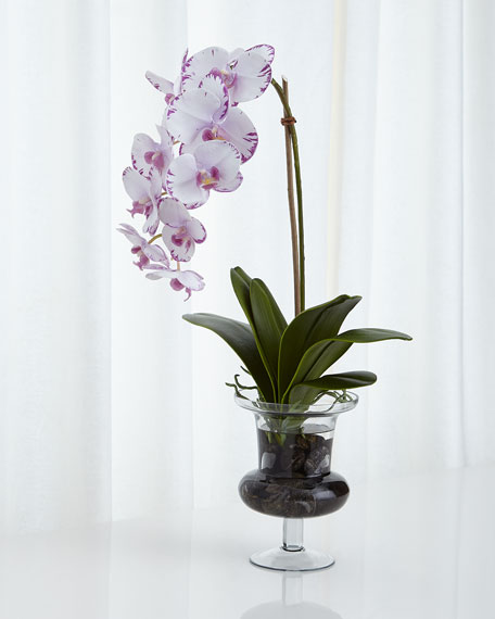 Natural Decorations Inc Phalaenopsis Orchid Faux Floral