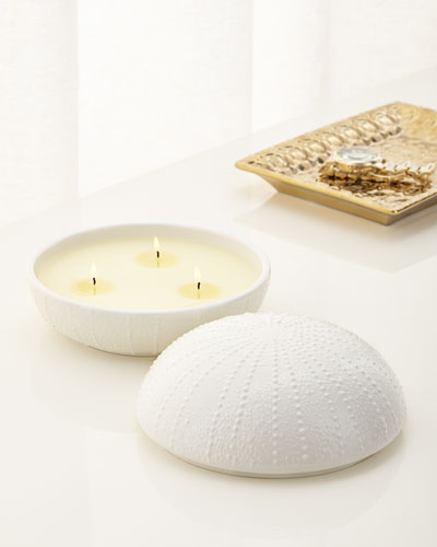 Large Sea Urchin 3-Wick Candle
