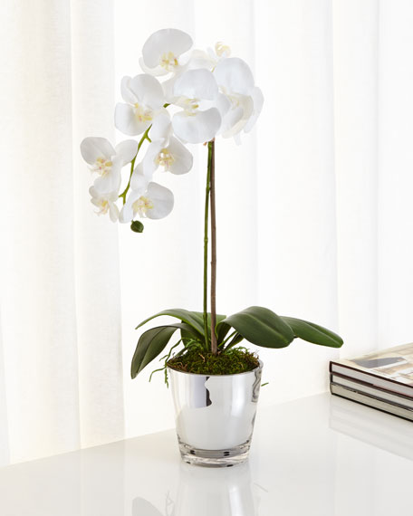 Well-known NDI Orchids in Mirrored Glass Faux-Floral Arrangement | Neiman Marcus UB35