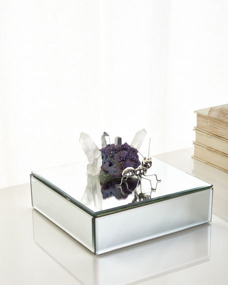 John-Richard Collection Mirrored Ant Box