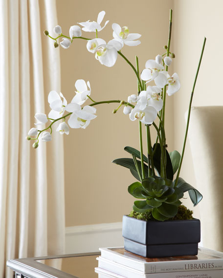 Perfect John-Richard Collection White Orchid in Black Planter Faux-Floral  GQ46