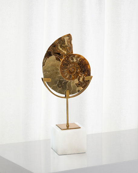 John-Richard Collection Standing Ammonite, Small and Matching