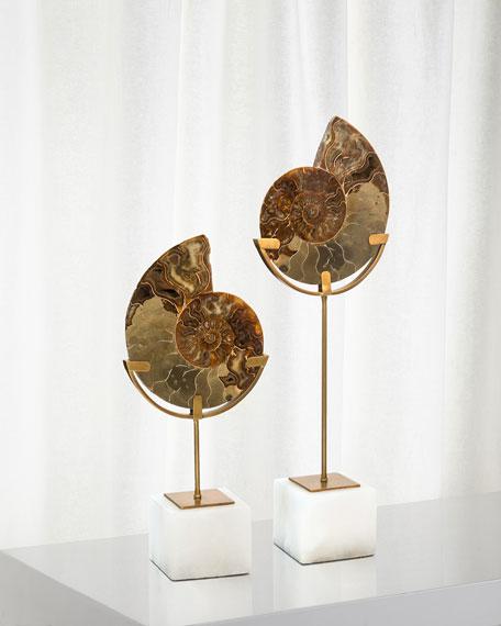 Standing Ammonite, Large