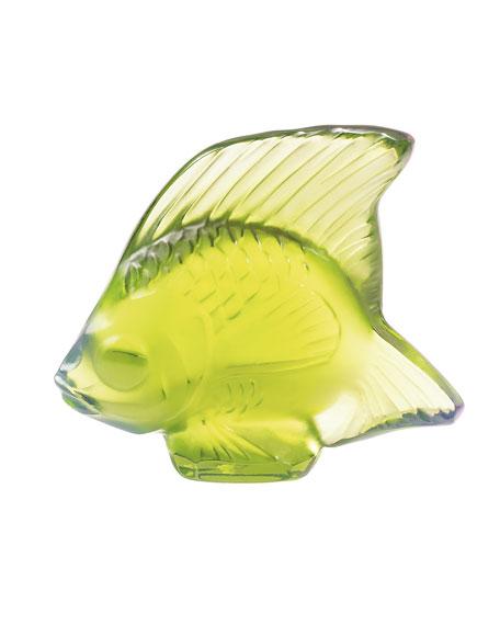 Anise Fish
