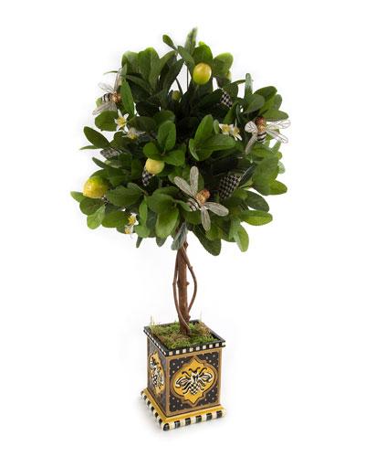 Queen Bee Lemon Tree