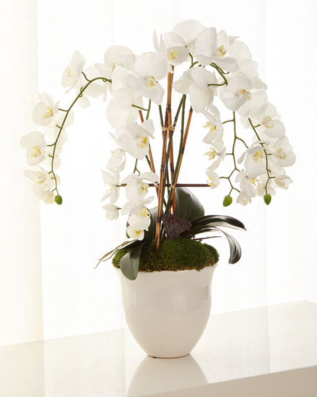 John-Richard Collection Abstract Orchids Arrangement