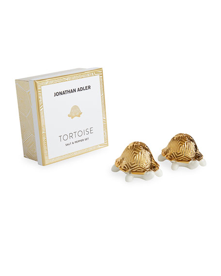 Tortoise Salt and Pepper Shakers