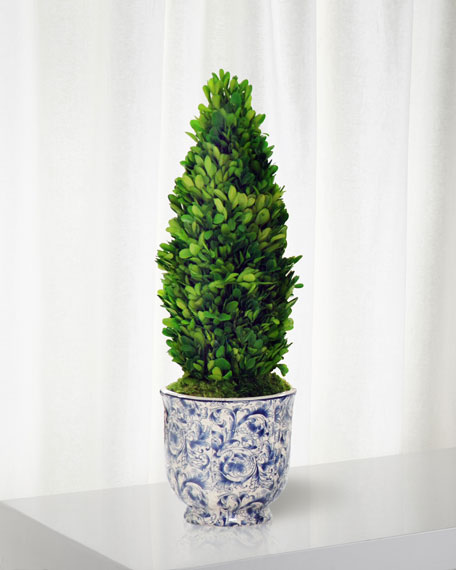 Boxwood Cone Topiary in Cache Pot