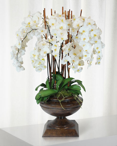 White Orchid in Brown Classico Urn
