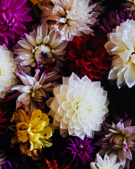 """""""Bunch of Flowers"""" Photography Print on Photo Paper"""