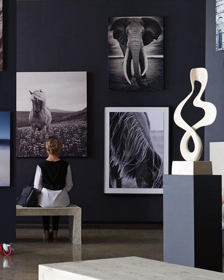 """Rafiki"" Photography Art Print on HD Metal w/ Acrylic Backer"