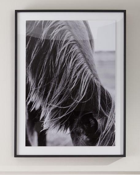 """Mane II"" Photography Print on  Photo Paper Framed Art"
