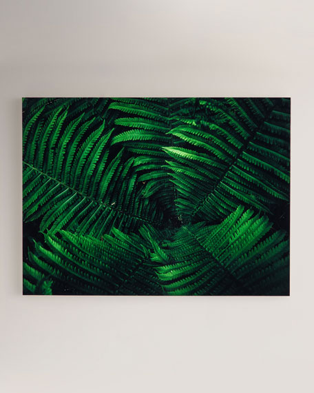 """Tropical Plant"" Photography Print on Maple Box Framed Wall Art"