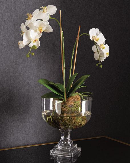 Nature's Beauty Orchid Faux-Floral Arrangement
