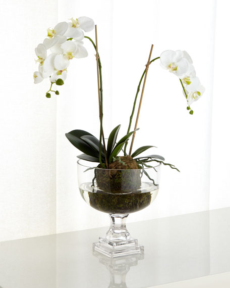 John-Richard Collection Nature's Beauty Orchid Faux-Floral