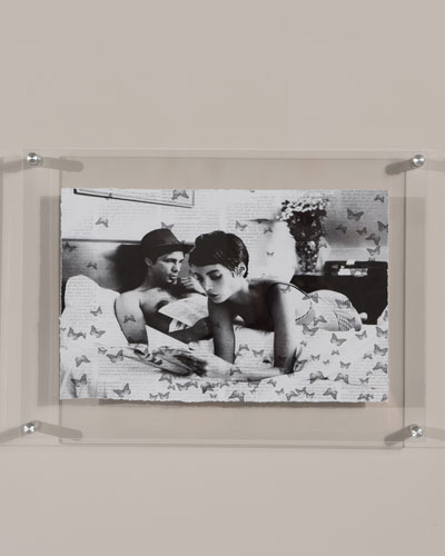 Butterfly Stories Print Photography Art in Plexi Frame