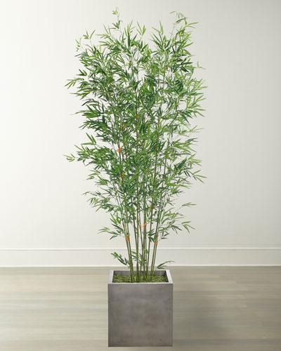 Bamboo Arrangement in Cube