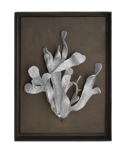 Kelp Shadow Box