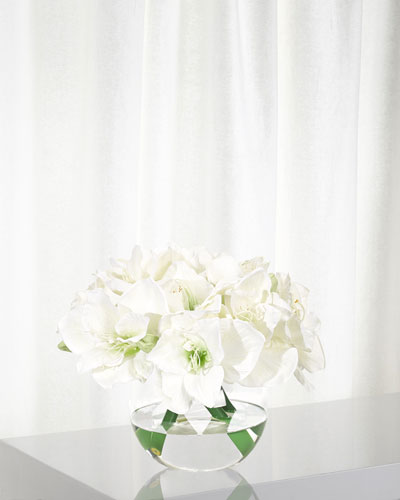 Amaryllis Floral Arrangement