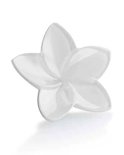 Bloom Crystal Flower Decor  White