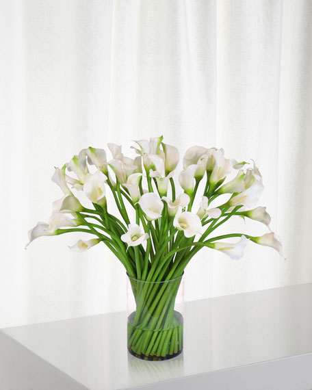 Winward Calla Lily in Clear Cylinder Vase