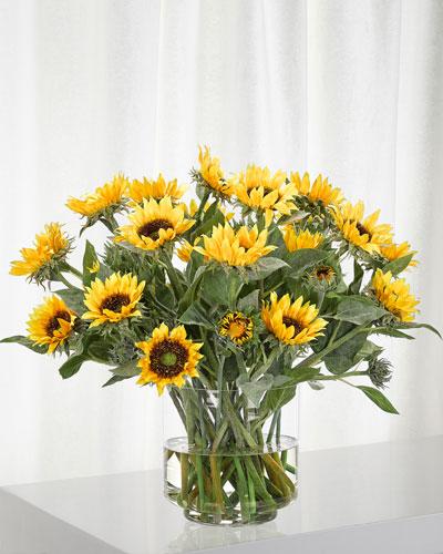 Yellow Sunflower Arrangement in Glass Cylinder