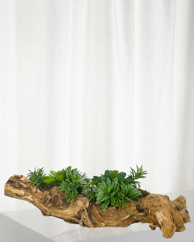 Green Succulents in Wood Planter