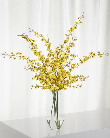 NDI Orchid Oncidium Arrangement in Glass Teardrop Vase