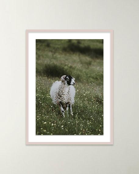 "Four Hands Art Studio ""Sheep"" Giclee Art by Annie Spratt"