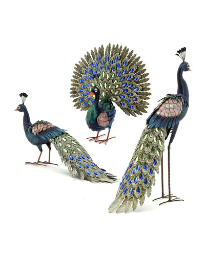Assorted Peacocks  Set of 3