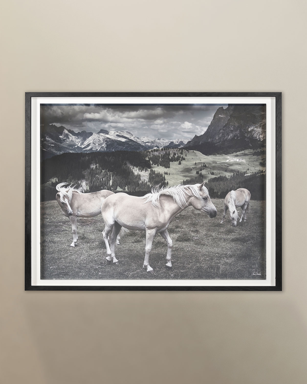 "Grand Image Home ""Horses in Europe"" Archival Digital Print by Chris Dunker"
