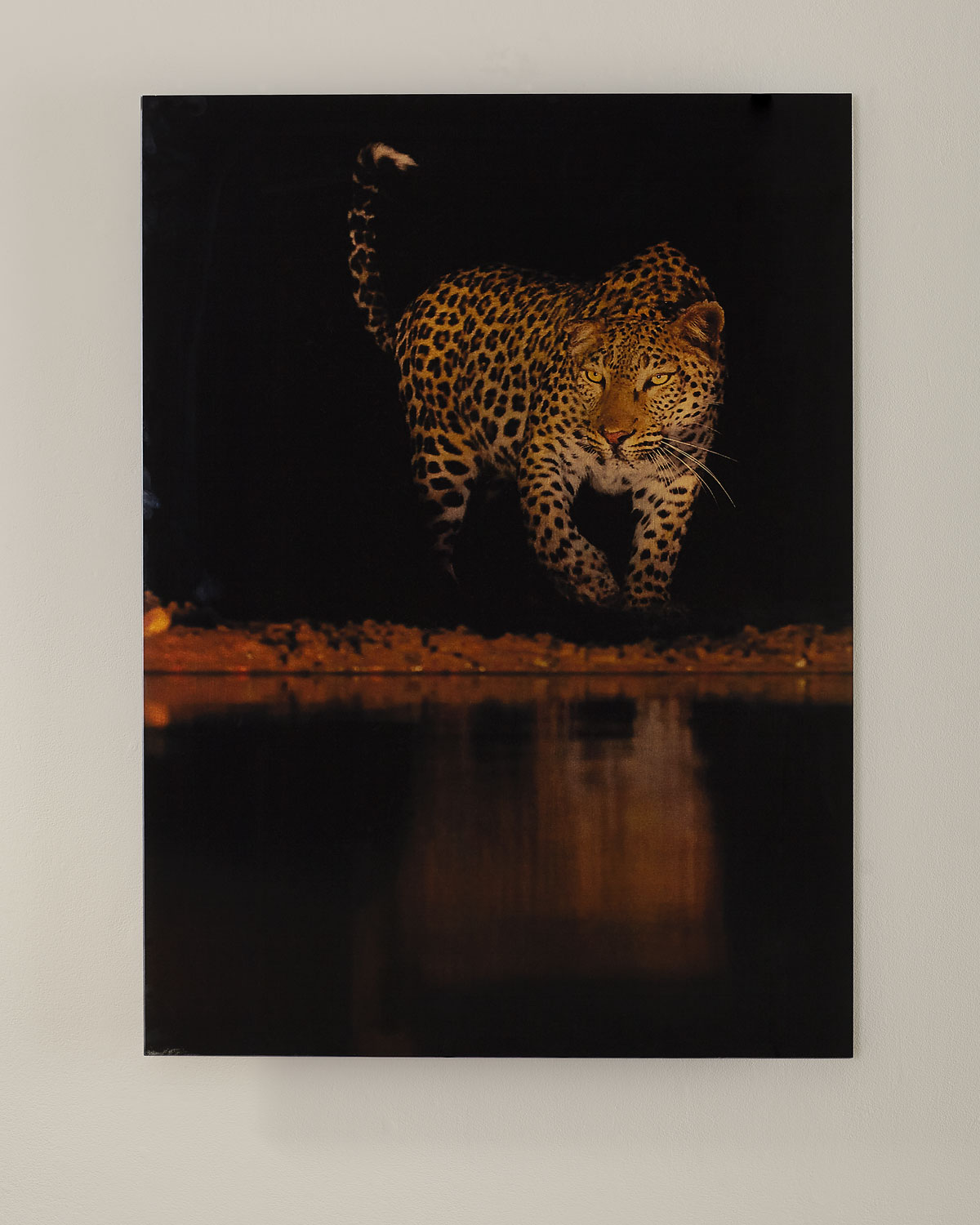 """Lakeside Leopard"" Giclee Photography"