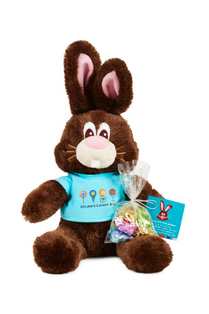 Dylan's Candy Bar Chocolate The Bunny with Candy