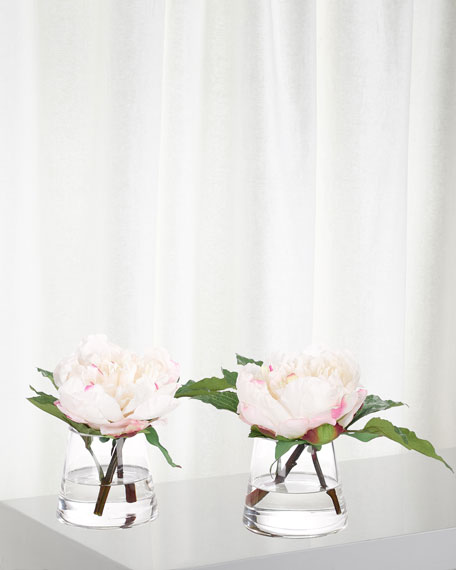 NDI Set of 2 White/Pink Peonies in Glass Vases