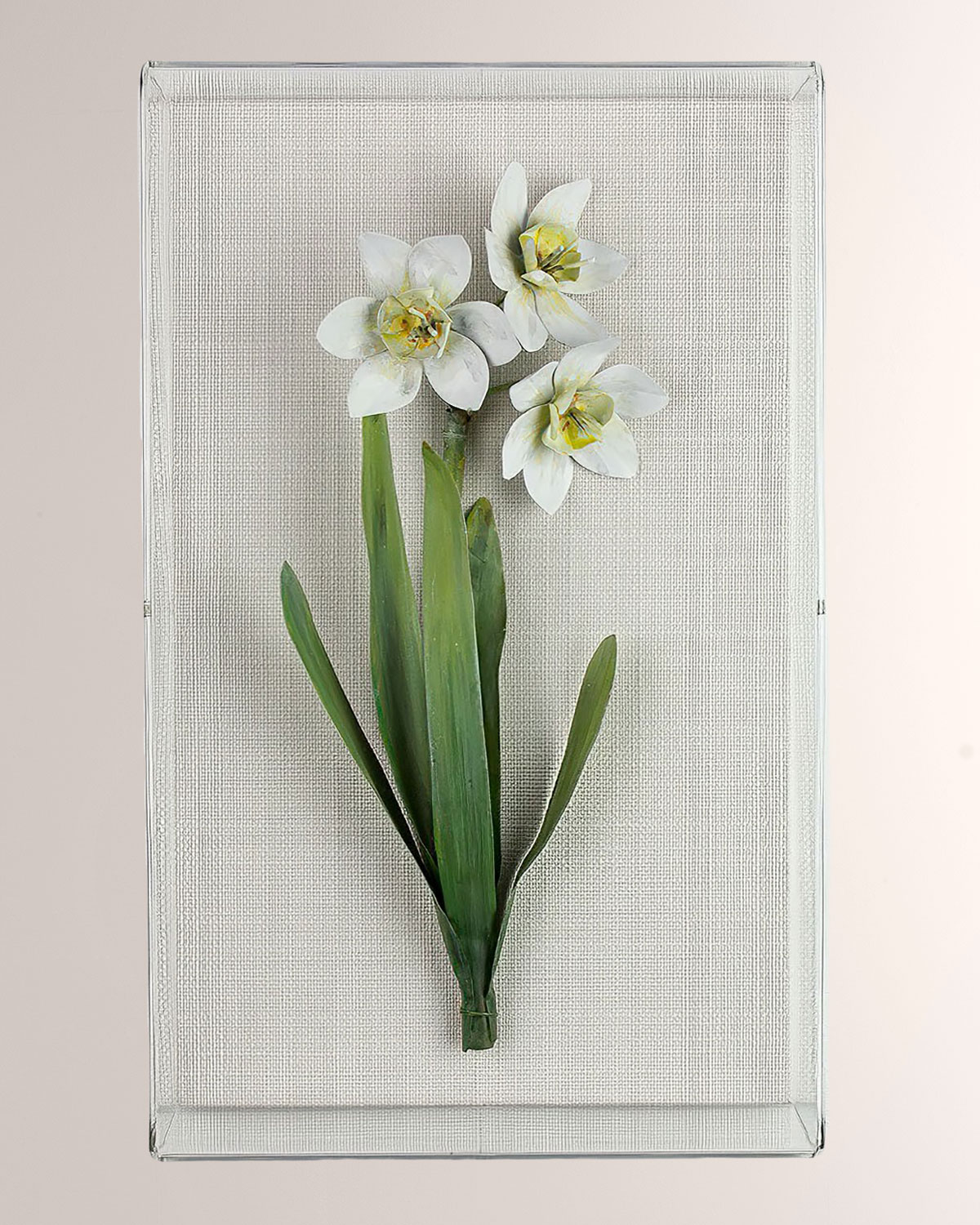 Charlotte Moss for Tommy Mitchell Narcissus December Birth Flower Wall Art