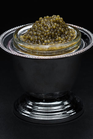 Browne Trading Company Individual Caviar Server