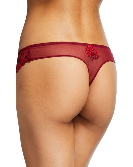 Wish Lace Mesh Tanga