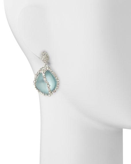 Jardin de Mystere Crystal Caged Lucite Drop Earrings