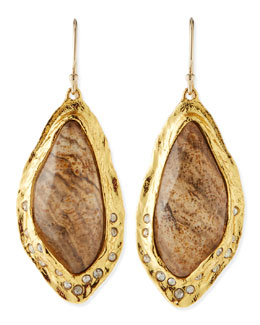 Alexis Bittar Jasper Drop Earrings with Crystals