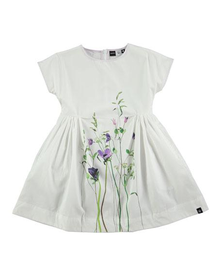 Molo Cady Summer Flowers Poplin Dress, White, Size
