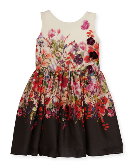 Zoe Scarlet Sleeveless Floral Crepe Chiffon Dress, Multicolor,