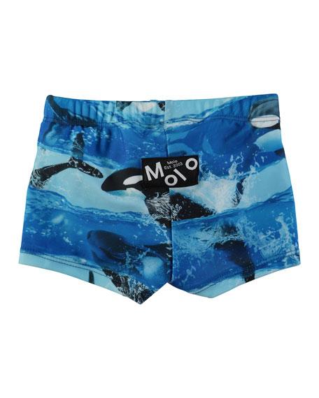 Nansen Killer Whale Swim Shorts, Size 3-24 Months
