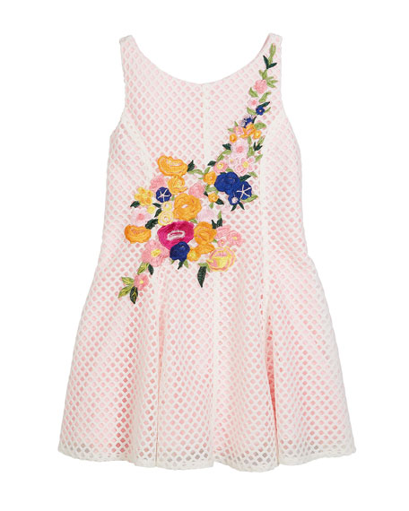 Netted Floral Embroidered Dress, Size 7-16