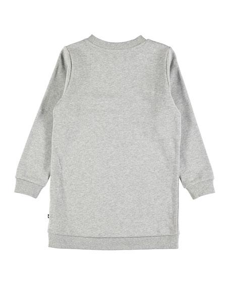 Cassia Rabbit Sweatshirt Dress, Size 2T-12