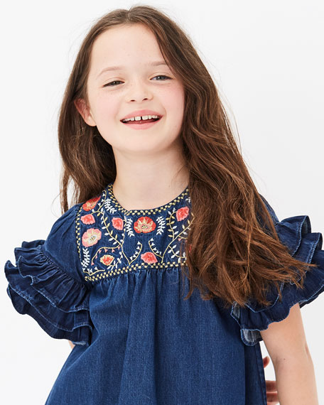 Velveteen Ginny Denim Embroidered Dress, Size 4-6
