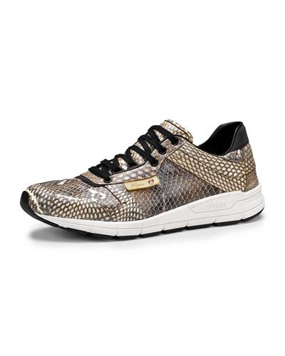 Gucci Ipanema Cobra Lace-Up Sneaker, Tan