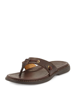 Sperry Top-Sider Gold Cup Thong Sandal, Dark Brown