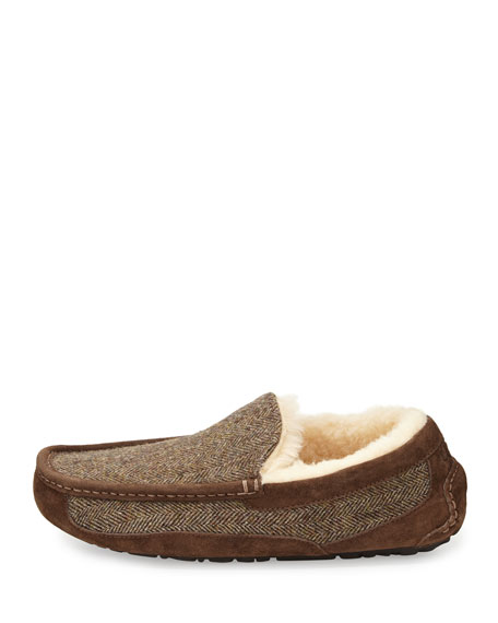 Ascot Tweed Slip-On Loafer, Dark Brown